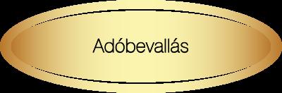 Adószakértői terület - Adóbevallás